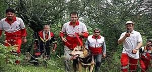 اقدام زشت و هولناک داماد با مادر زن در جنگل گرگان