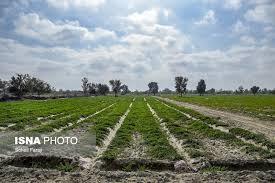 کابوس بحران آب در مازندران!
