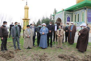 آغاز طرح درختکاری در بقاع متبرکه مازندران/ کاشت 1000 اصله نهال صنوبر در جویبار